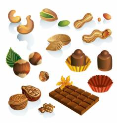 Nuts and sweets vector