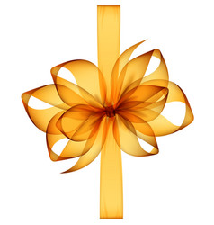 Orange yellow transparent bow and ribbon vector
