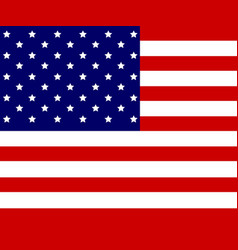 usa flag of american vector image