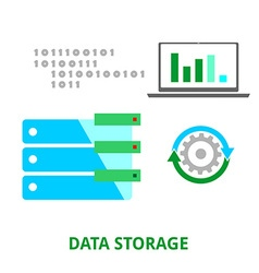 Data storage vector