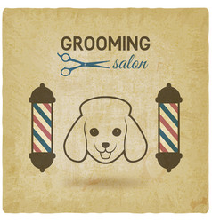 pet grooming salon logo design vintage background vector image vector image