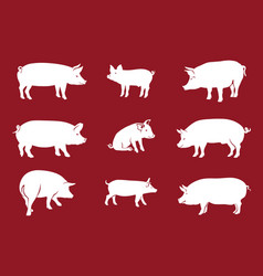 Quality silhouettes pigs red vector