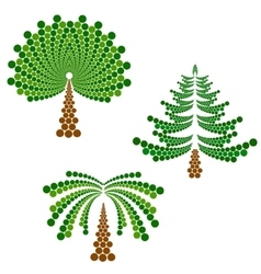 Coniferous deciduous tree and palm vector