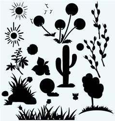 Set plants vector image