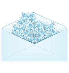 Snowflake in envelope vector image vector image