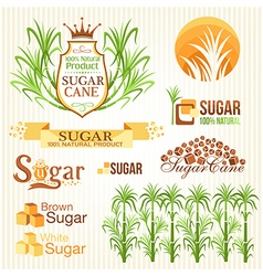 Sugar design elements vector image