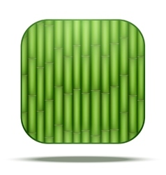 Bamboo square icon vector