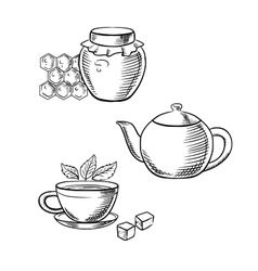 Cup of tea honey jar and teapot sketches vector