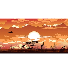Plane flies at dusk over the african savanna vector
