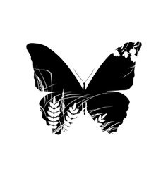Silhouette of butterfly with grass vector image vector image