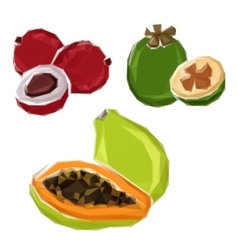 Polygonal tropical papaya feijoa lychee fruits vector