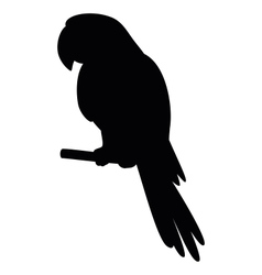parrot on a pole silhouette vector image vector image