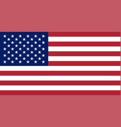 usa flag united states of america national symbol vector image vector image