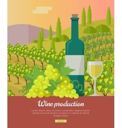 Wine Production Banner Poster for White Vine vector image vector image