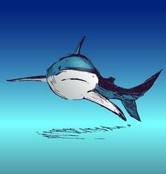 Colored hand sketch shark vector