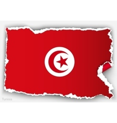 Design flag tunisia from torn papers with shadows vector