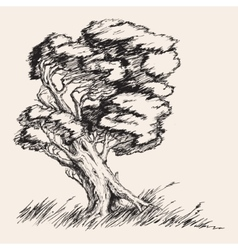 Strong wind tree hand drawn vector