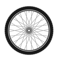 Isolated Bicycle Wheel vector image