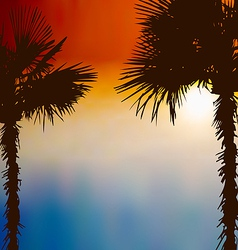 Tropical palm trees sunset background vector