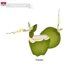 Fresh coconut a famous fruit in kiribati vector