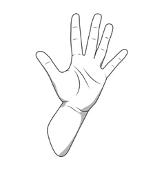Palm hand number five gesture vector