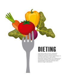 healthy food for dieting vector image