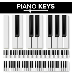 Piano keyboard realistic isolated vector