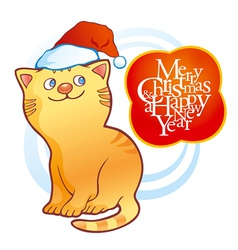 Kitten wearing christmas cap vector image