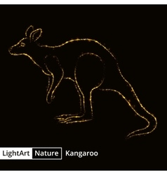 Kangaroo silhouette of lights on black background vector image