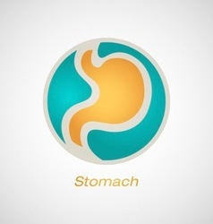 Stomach poster vector