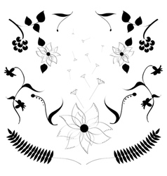 A set of flowers vector