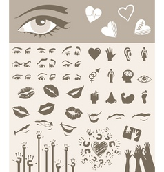 Body parts design elements vector
