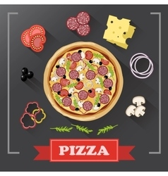 Pizza ingredients parts on chalkboard with signed vector