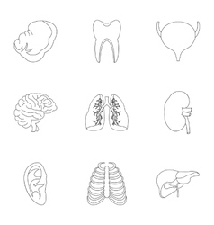 Structure of body icons set outline style vector