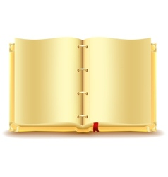 Open gold book vector image