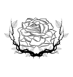 Rose with branches tattoo art design vector image vector image
