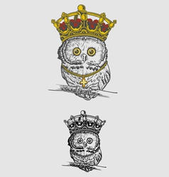 The King Owl Drawing vector image vector image