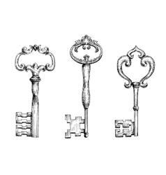 Vintage medieval skeleton keys sketches vector