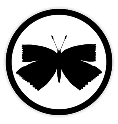 Butterfly button on white vector image