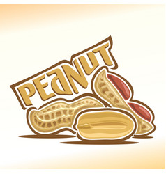 logo for peanut nuts vector image