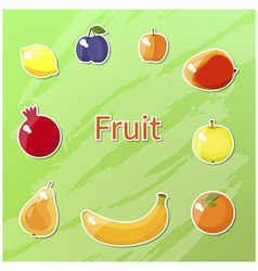 fruit set vector image