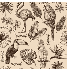 Hand drawn sketch tropical paradise plants and vector