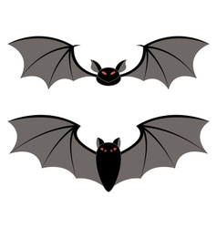 bats different types on a white background vector image vector image