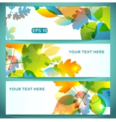 Three banners of shiny colorful autumn leaves vector