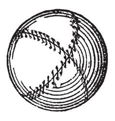 Sports ball vintage vector