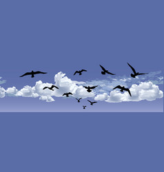 flock of bird flying blue sky background animal vector image vector image