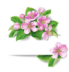 flowering branch vector image