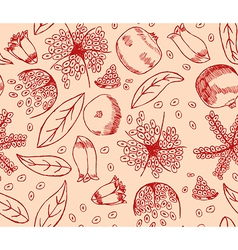 Red pomegranate pattern vector