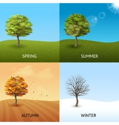 Tree concept set vector