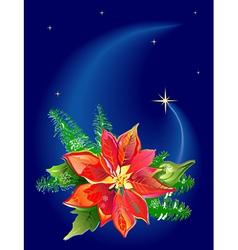 christmas poinsettia vector image vector image